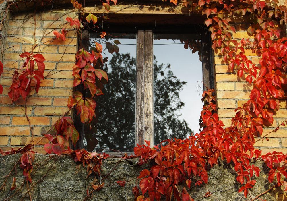 sergio-trafeli-volterra-Mostra2011-015