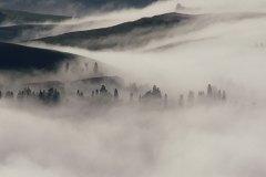 sergio-trafeli-volterra-Nebbia-035