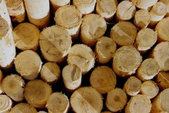 sergio-trafeli-volterra-legna